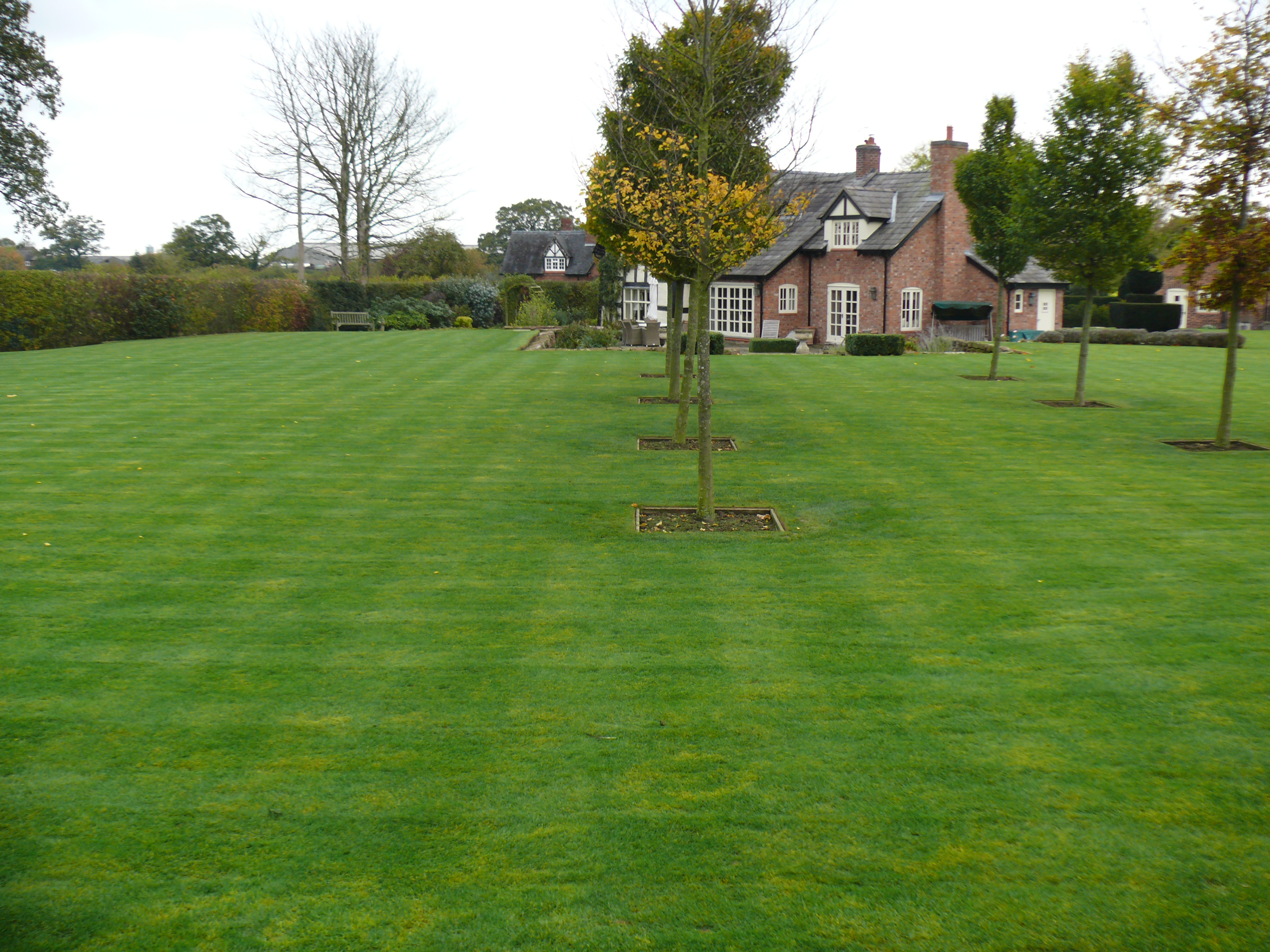 Are Fabulous Looking Lawns Hard To Maintain Top 5 Of